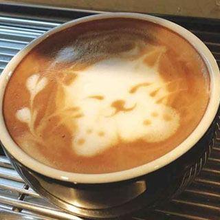 実は「コーヒーで簡単に脂肪が消える?」たった1分の習慣で簡単に痩せる裏技が凄すぎ!